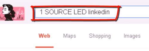 搜索Linkedin上的公司成员信息