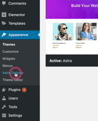 """Appearance中的""""Astra Options"""""""
