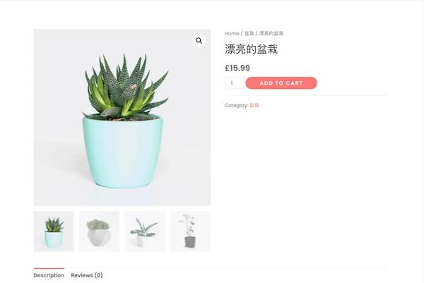 产品页面显示了图片和类别