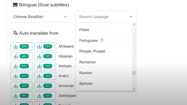 把字幕翻译成其他语言